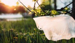5 maneras de reducir el uso de plastico