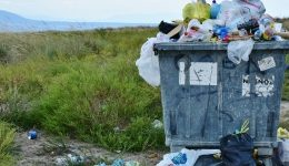 Cinco formas de reducir tus desperdicios en casa