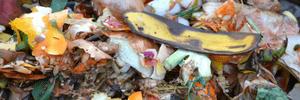Home composting