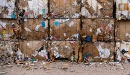 Visiting our local recycling centre - Part 1 (By Melissa Vaughn)