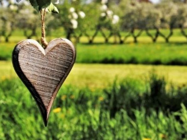 wooden heart hanging in nature